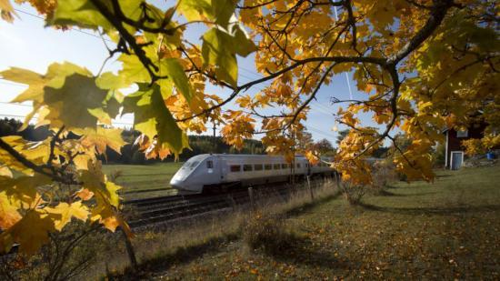 Ett X 2000-tåg susar fram genom soligt höstlandskap.