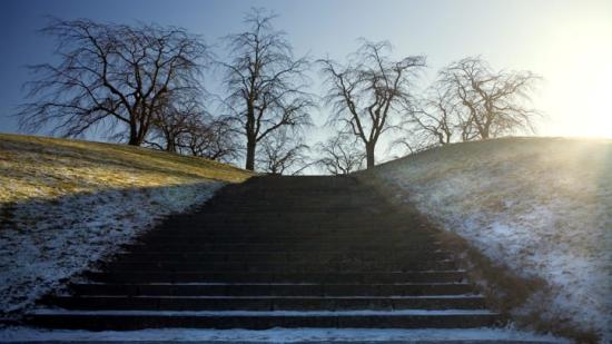 Svevia får fortsatt förtroende för att sköta om grönytor och gravplatser på Skogskyrkogårdens norra del.